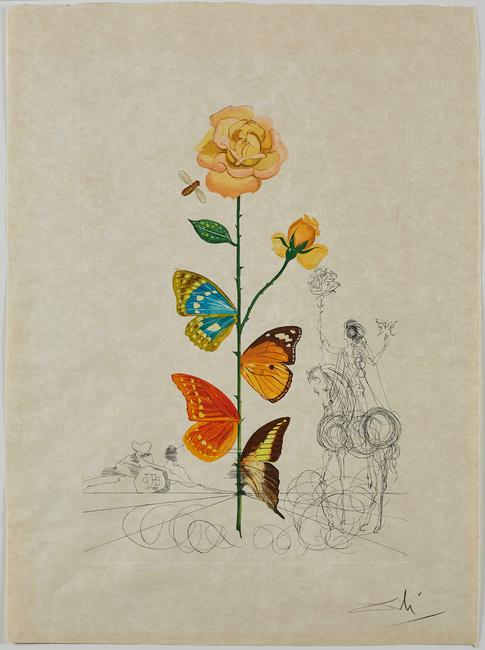 Rosa, Flordalí (Flor Dalinae), Salvador Dalí, 1968.  Photo Lithography with drypoint etching.  Collection of The Dalí Museum, St Petersburg, FL (USA) 2019; © Salvador Dalí, Fundació Gala-Salvador Dalí, (ARS), 2019