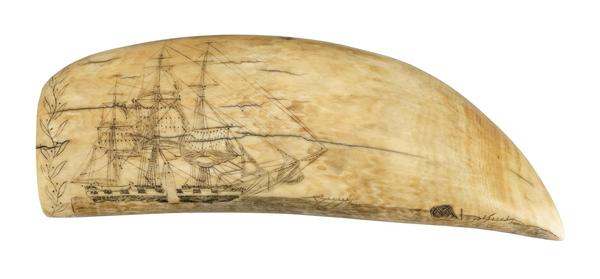 One of 250 pieces of scrimshaw on view
