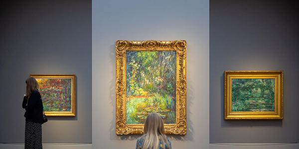 Monet: Places installation view