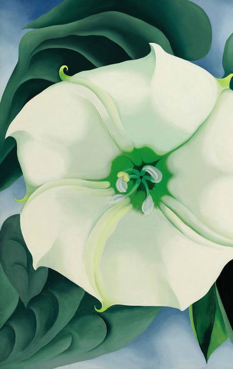 Jimson Weed (White Flower No.  1), 1932, by Georgia O'Keeffe
