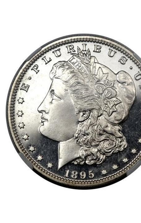 Example of a 1895 Morgan silver dollar