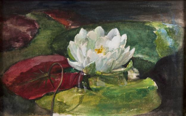 John La Farge (1835-1910) Water Lily with Green and Red Pads, circa 1883, Pencil, watercolor, and gouache on heavy wove paper, 5 ½ x 9 ½ inches.  Thomas Colville Fine Art.