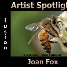 Joan Fox - Artist Spotlight Solo Art Exhibition www.fusionartps.com