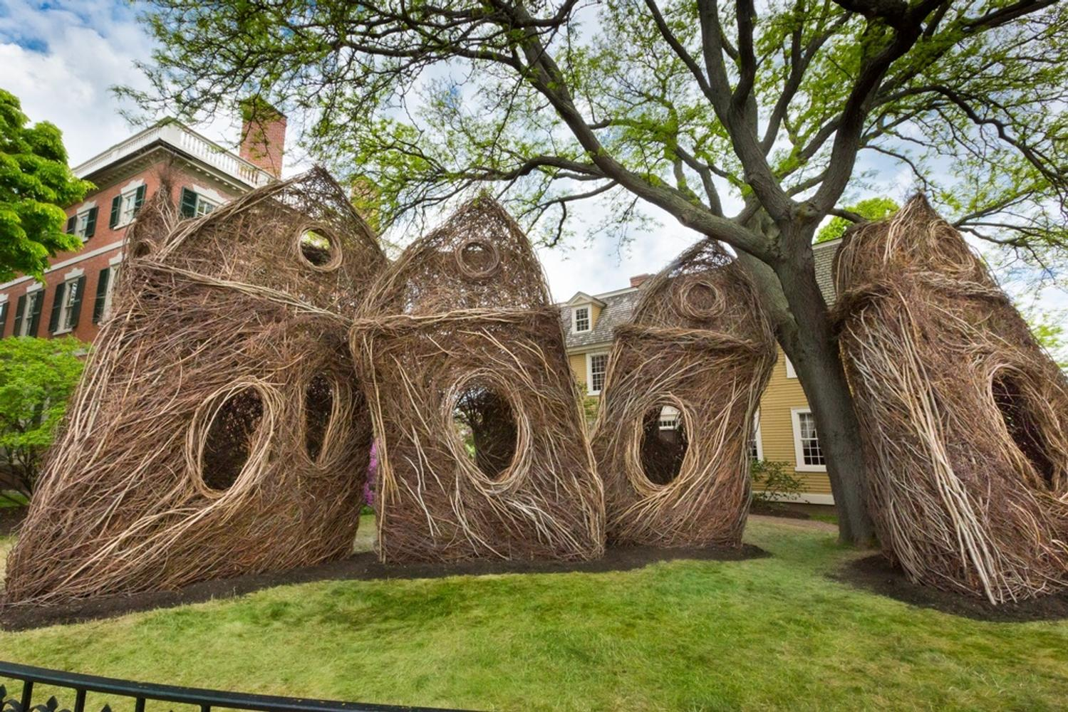 Peabody Essex Museum Commissions Its First Outdoor
