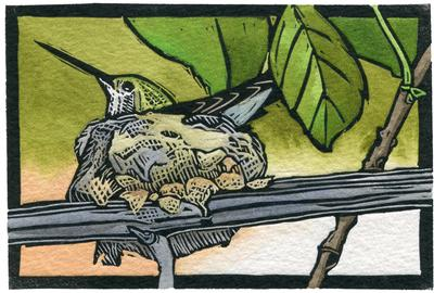 "Sherrie York, ""Home Sweet Home,"" Hand Painted Linocut, 4 x 6 inches.  (Hummingbird in nest)"