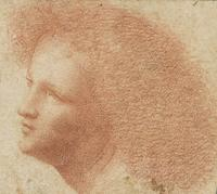 Giovanni Agostino da Lodi (active ca.  1467 - ca.  1524), Head of a Youth Facing Left, 15th century, red chalk on paper.  The Morgan Library & Museum, 1973.35:2, Gift of János Scholz