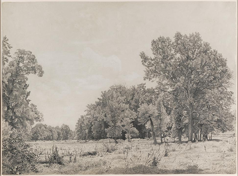 William Trost Richards (1833–1905), Landscape, c.  1865, graphite and gouache on paper, 17 1/2 x 23 1/2 inches.  Palmer Museum of Art, John Driscoll American Drawings Collection