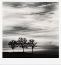 Michael Kenna, Three Trees at Dusk, Fain Les Moutiers, Bourgogne, France, 2013, gelatin silver print, 7 11/16 x 7 11/16 in.  (19.5 x 19.5 cm), Cincinnati Art Museum; Gift of the Artist, 2014.17.  © and courtesy Michael Kenna